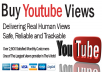 add 1200 USA high quality Youtube Views in 3hrs no drop,no bots