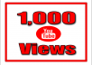give 1000 super high quality YouTube Views real and permanent