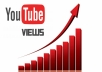 provide 2000 youtube views, high retention