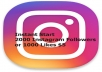 give 2000+ Permanent Instagram Followers or 10,000 Likes
