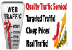 send 3000 visitors to your site