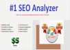 Audit Your Website And Provide A Depth SEO Analysis Report