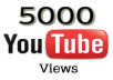 Add 5000+ High Quality Youtube views