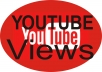give you 1000 Youtube Viewers