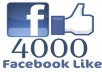 provide 4000 Facebook post/photo likes, instant
