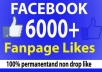 give you 6000 facebook fan page likes