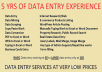 do any type of data entry in 2 days