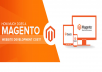 We have only Senior Magento certified developers with huge experience in our team and we develop Magento websites and Magento extensions only according to the best Magento standards and best coding practices. 