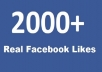 Provide 1500+ Facebook Fan page Likes to promote your page within 12 hours