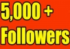 deliver 5,000 twitter followers