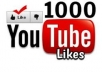 Provide 1000+ Non Drop Youtube Video Likes less than 1 hour