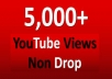 Provide you 5000+ Fast & Save Youtube views less than 2-3 hours