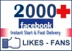 provide you 2,000+ Facebook Likes Real & Lifetime Guaranteed