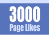 give you 3000 facebook likes in one day