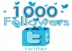 add 1,000+ High Quality Twitter followers within 24 hrs