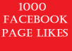 Provide 1000 Quality Facebook Page Likes