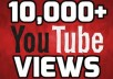 i will provide you 10.000 youtube views to your video you can split max 5 videos, your video will not deleted or get banned