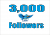 add 3,000+ High Quality Twitter followers