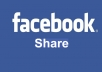 Give 60 Facebook Share only