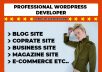 create a PROFESSIONAL WordPress Website in 24 Hours