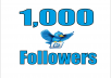 add 1,000+ High Quality Twitter followers