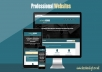 design you a professional, responsive web page