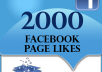 Give you 2500 Facebook page like