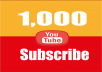 provide 1,000 Youtube subscribers to your channel