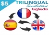 professionally translate your file into English, French or Spanish