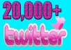 add 20,000 Real Twitter Follower within 24 hours