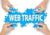 Send More Than 200,000 Organic/Targeted Traffic For Your Sites And Blogs