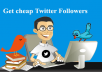 deliver 1100 real twitter followers