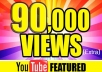 Provide 90,000+ Youtube View