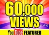 Provide 60,000 Youtube Views