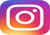 give you 4000+  followers instagram