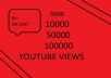 Give Fast Start 3000 High Quality Real Youtube Views