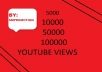 Fast Start 15000-20000 High Quality Real Youtube Views