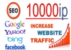 Traffic the site from 1 to 10000 ip visitors per day from any region