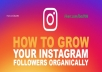 provide 500 instagram followers, organic, permanent, real,high quality, safe,