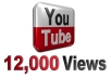 provide you high quality 12,000+ YouTube Video views
