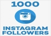 Give you 100% Real, Permanent & Human Verified Active 1000 Instagram Followers