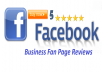 Promote 50 Facebook five star rating and review on your business fan page