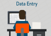 offer fast accurate and reliable data entry, typing and research