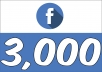 Add 3,000+ Facebook (Fan Page) Followers