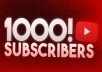 Add 1000+ Real Non Drop Youtube Subscribers Fully safe Instant start