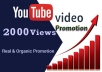 provide viral 2000 youtube views through video marketing