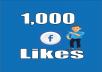 provide you 1000+ Facebook Fan Page Likes Non-Drop & Lifetime Guaranteed!