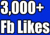 Give you 100% Non drop 3,000 Facebook Fan Page Likes