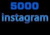 provide 5000 instagram followers, real and organic