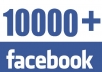 provide 10000 facebook Followers, real and safe for your account.